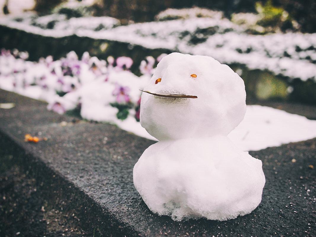 雪の日にそろえておきたい子どものための4点セット+1