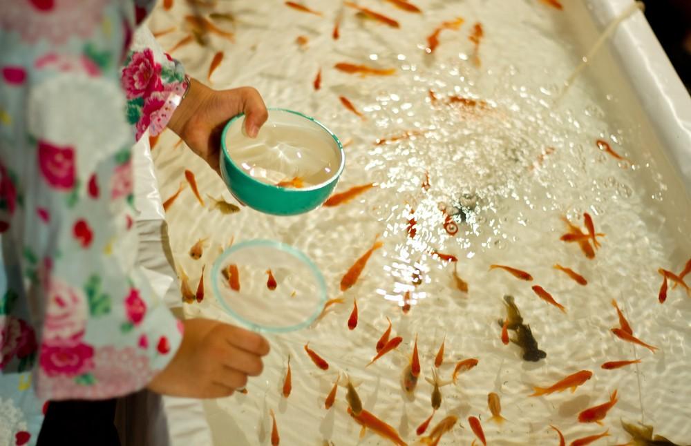 浴衣特典あり!子どもも遊べる縁日 深大寺の夕涼み会